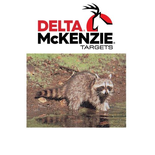 Delta-Racoon-Target