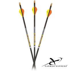 CarbonExpress-Mayhem-DS-Arrows