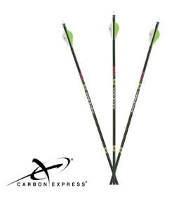 CarbonExpress-Maxima-XRZ-Arrows