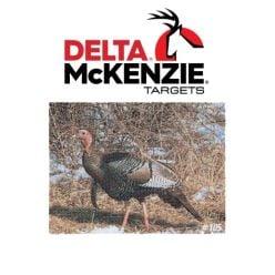 Delta-Turkey-Target