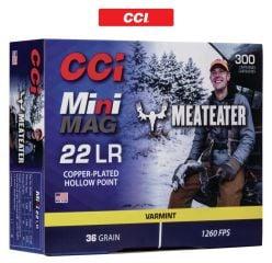 Mini-Mag-22 LR-Ammunitions