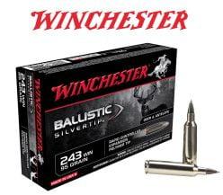 Ballistic-Silvertip-243-Winchester