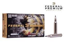 300-Winchester-Magnum-Ammunitions