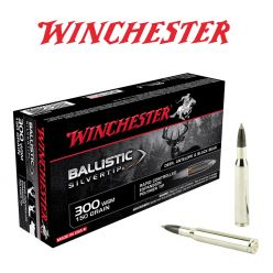 Ballistic-Silvertip-300-WSM