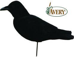 Appelant-Corneille-FFD-Elite-coprs-entier-sentinnelle-Avery