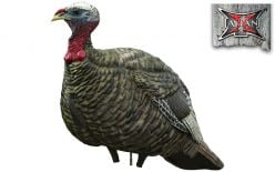 Avian X LCD Jake Quarter Strut Turkey Decoy
