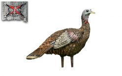 Avian X LCD Lookout Turkey Turkey Decoy