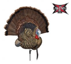 Trophy-Tom-Turkey-Decoy
