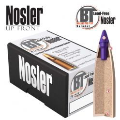 Nosler-6mm-55 gr-Bullets