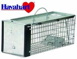 cage-havahart-petite