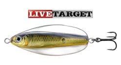 Live Target Erratic Shiner 2042-3/4''