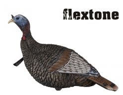 Thunder-Jake-1/4strut-Decoys