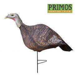 Photoform-Hen-Turkey-Decoy