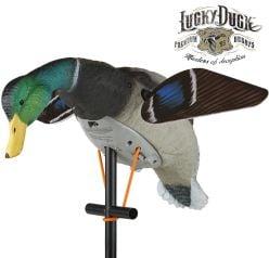 Duck-Lucky-HD-Decoy