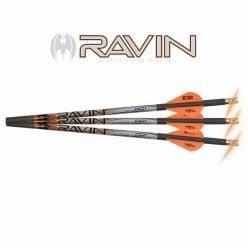 Ravin-.003-Arrows-Lighted