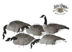 LuckyDuck-Silhouettes-Canada-Goose