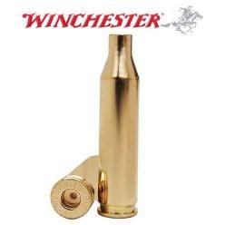 Winchester 243 WSSM Shellcases