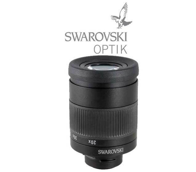 Oculaire-20-60x-Swarovski-Optik